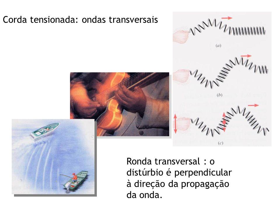 Ronda transversal : o distúrbio é perpendicular à direção da propagação da onda.