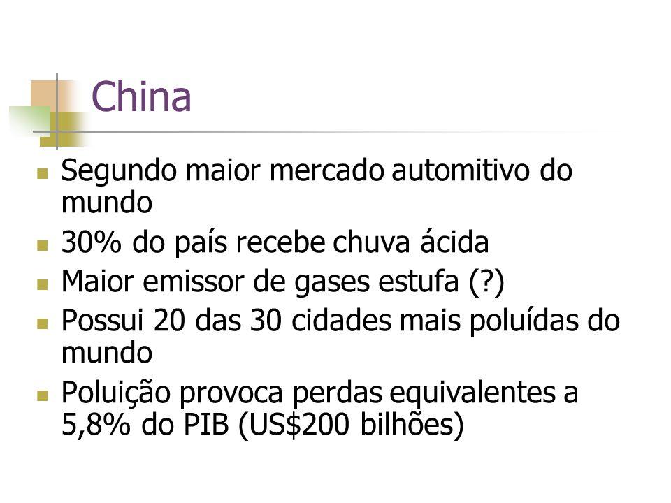 China Segundo maior mercado automitivo do mundo 30% do país recebe chuva ácida Maior emissor de gases estufa (?) Possui 20 das 30 cidades mais poluídas do mundo Poluição provoca perdas equivalentes a 5,8% do PIB (US$200 bilhões)