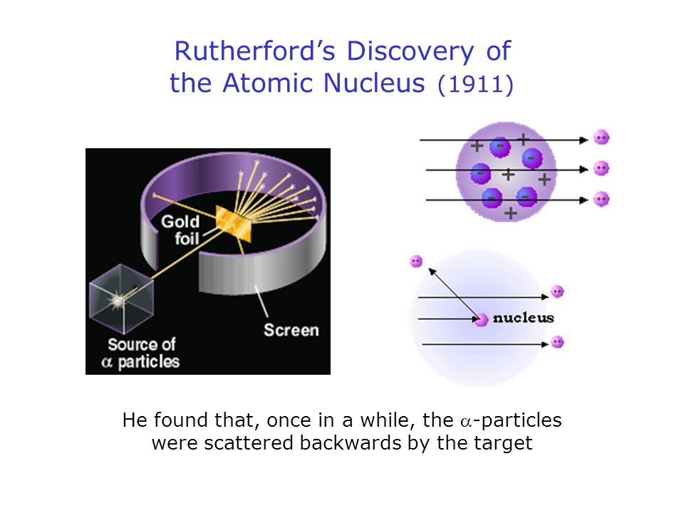 Rutherfords Discovery of the Atomic Nucleus (1911) He found that, once in a while, the -particles were scattered backwards by the target