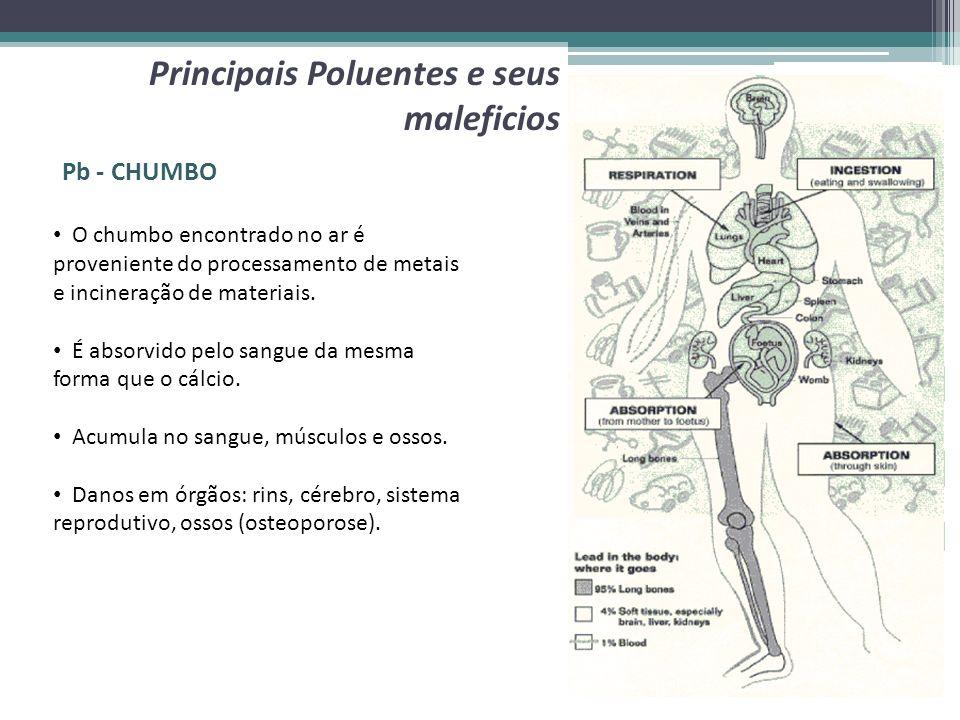 Pb - CHUMBO Principais Poluentes e seus maleficios O chumbo encontrado no ar é proveniente do processamento de metais e incineração de materiais. É ab