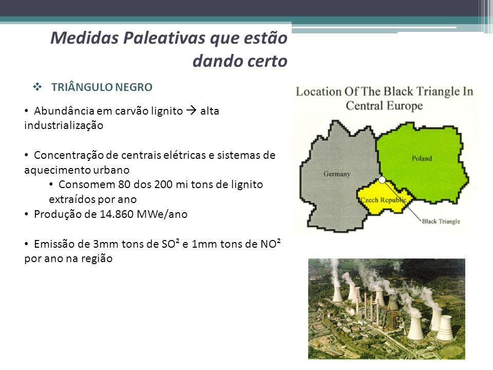 TRIÂNGULO NEGRO Medidas Paleativas que estão dando certo Abundância em carvão lignito alta industrialização Concentração de centrais elétricas e siste