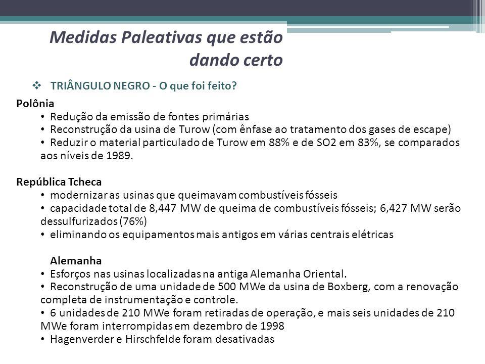 TRIÂNGULO NEGRO - O que foi feito? Medidas Paleativas que estão dando certo Polônia Redução da emissão de fontes primárias Reconstrução da usina de Tu