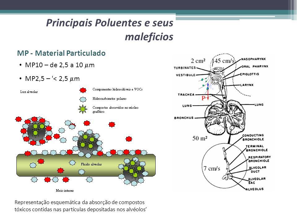 MP - Material Particulado Principais Poluentes e seus maleficios MP10 – de 2,5 a 10 m MP2,5 – '< 2,5 m Representação esquemática da absorção de compos