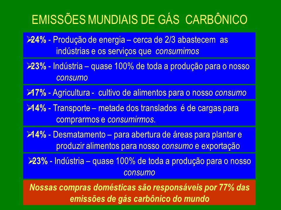 EMISSÕES MUNDIAIS DE GÁS CARBÔNICO 24% - Produção de energia – cerca de 2/3 abastecem as indústrias e os serviços que consumimos 23% - Indústria – qua