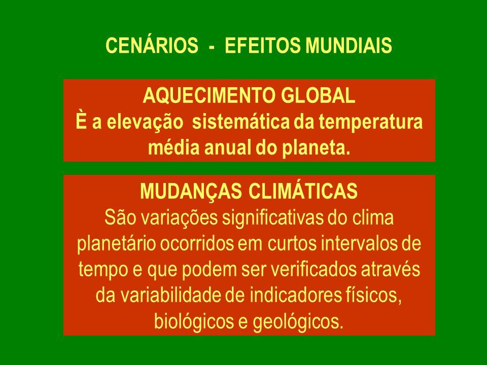 CENÁRIOS - EFEITOS MUNDIAIS MUDANÇAS CLIMÁTICAS No último século foram observados mudanças climáticas sistemáticas que vêm sendo atribuídas à ação humana sobre o ambiente, cujas conseqüências se expressam na intensificação de fenômenos como Diminuição da camada de ozônio Derretimento das geleiras Extinção de espécies nativas da fauna e flora brasileira Furacões, vendavais e tsunames Secas e desertificação Grandes volumes de chuvas Aumento do nível dos mares