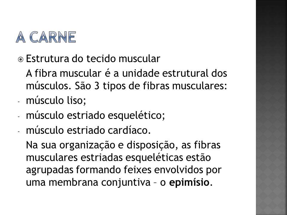 Estrutura do tecido muscular A fibra muscular é a unidade estrutural dos músculos. São 3 tipos de fibras musculares: - músculo liso; - músculo estriad