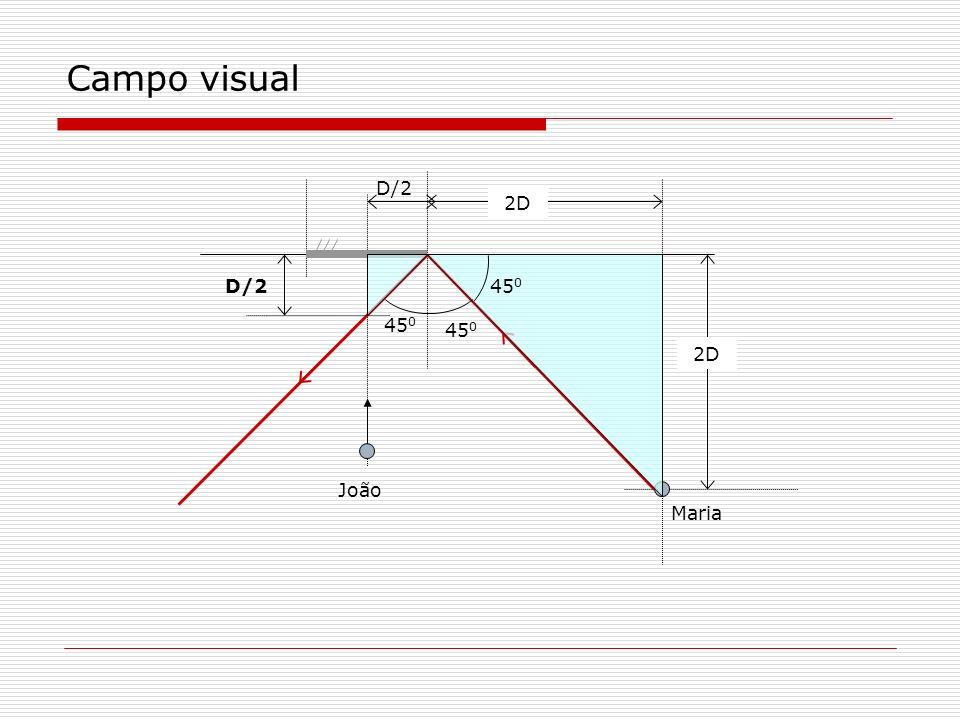 Campo visual 2D Maria 45 0 D/2 João D/2