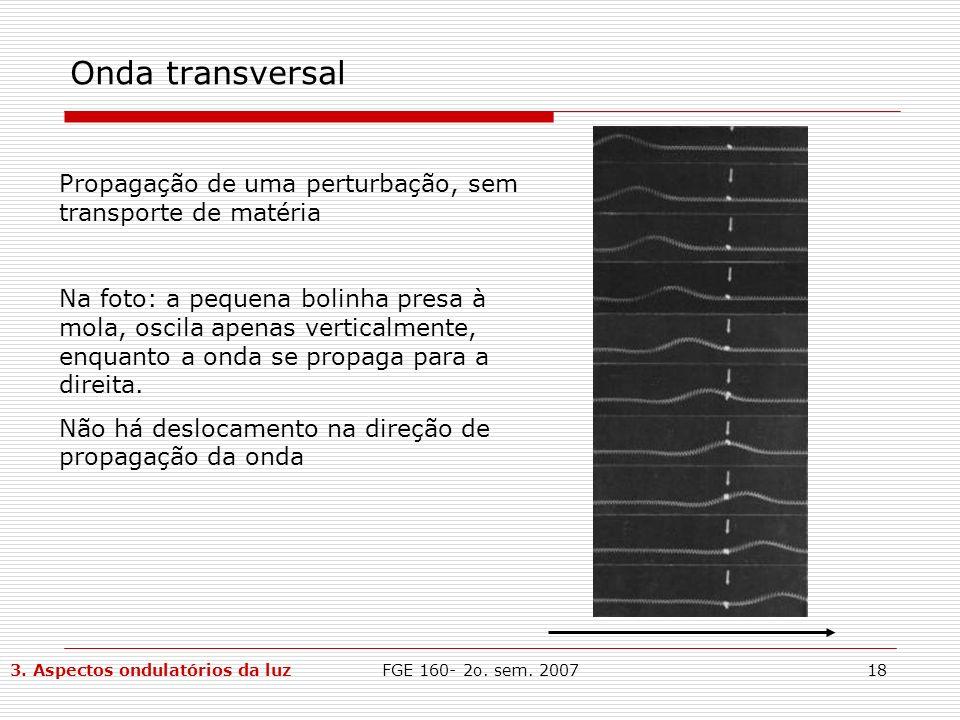 FGE 160- 2o. sem. 200718 Onda transversal Propagação de uma perturbação, sem transporte de matéria Na foto: a pequena bolinha presa à mola, oscila ape