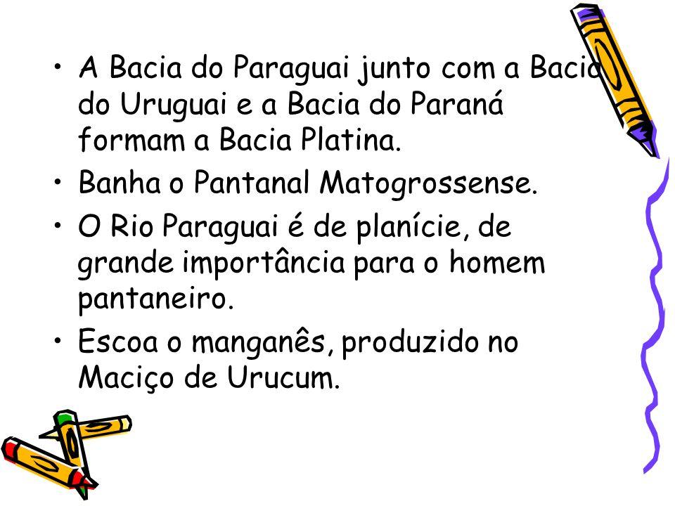 A Bacia do Paraguai junto com a Bacia do Uruguai e a Bacia do Paraná formam a Bacia Platina. Banha o Pantanal Matogrossense. O Rio Paraguai é de planí
