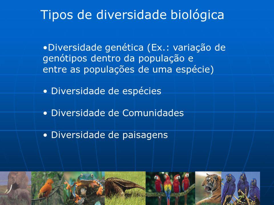 Tipos de diversidade biológica Diversidade genética (Ex.: variação de genótipos dentro da população e entre as populações de uma espécie) Diversidade de espécies Diversidade de Comunidades Diversidade de paisagens