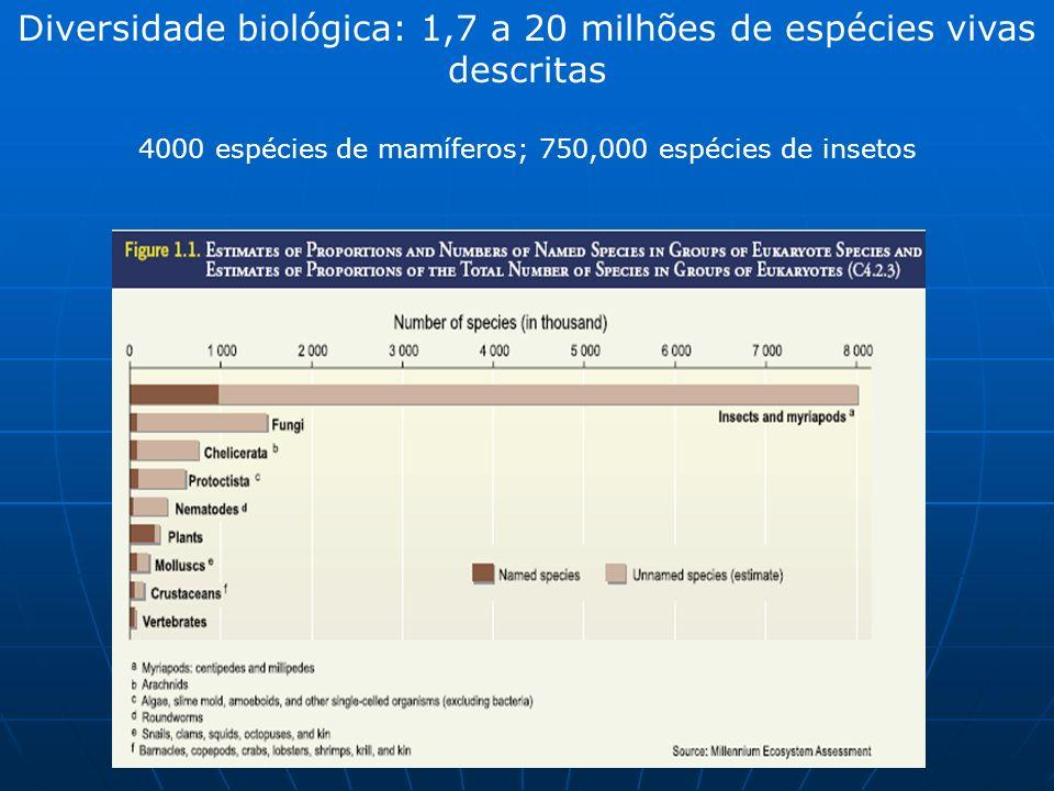 Diversidade biológica: 1,7 a 20 milhões de espécies vivas descritas 4000 espécies de mamíferos; 750,000 espécies de insetos