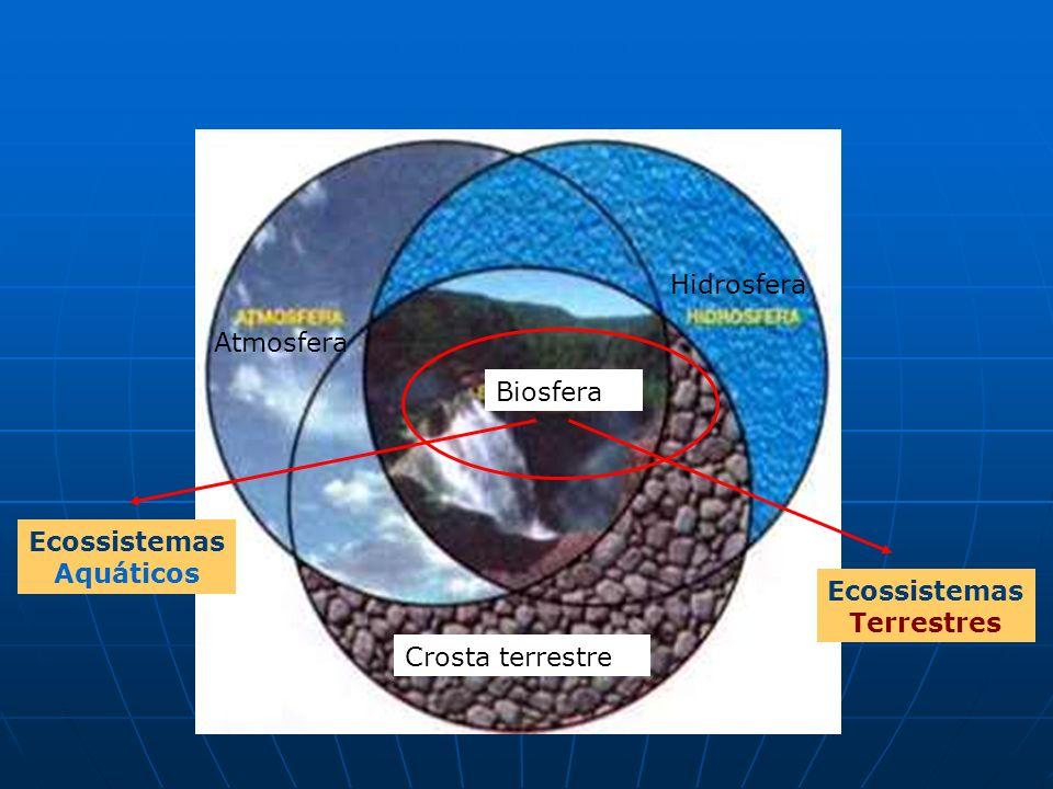 Atmosfera Biosfera Crosta terrestre Hidrosfera Ecossistemas Aquáticos Ecossistemas Terrestres