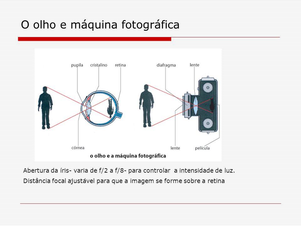O olho e máquina fotográfica Abertura da íris- varia de f/2 a f/8- para controlar a intensidade de luz. Distância focal ajustável para que a imagem se