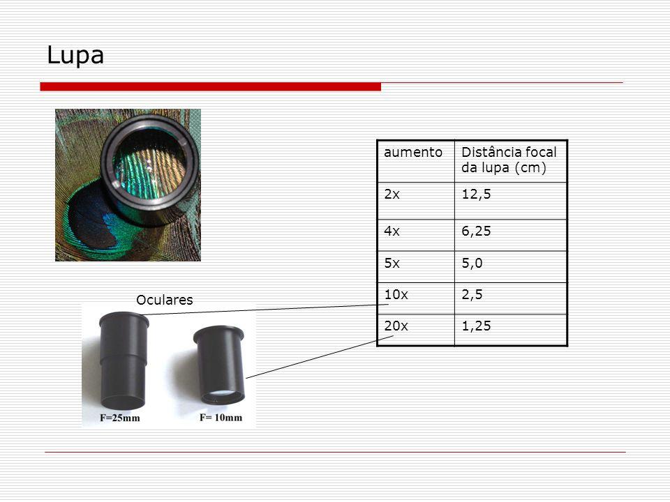 Lupa aumentoDistância focal da lupa (cm) 2x12,5 4x6,25 5x5,0 10x2,5 20x1,25 Oculares