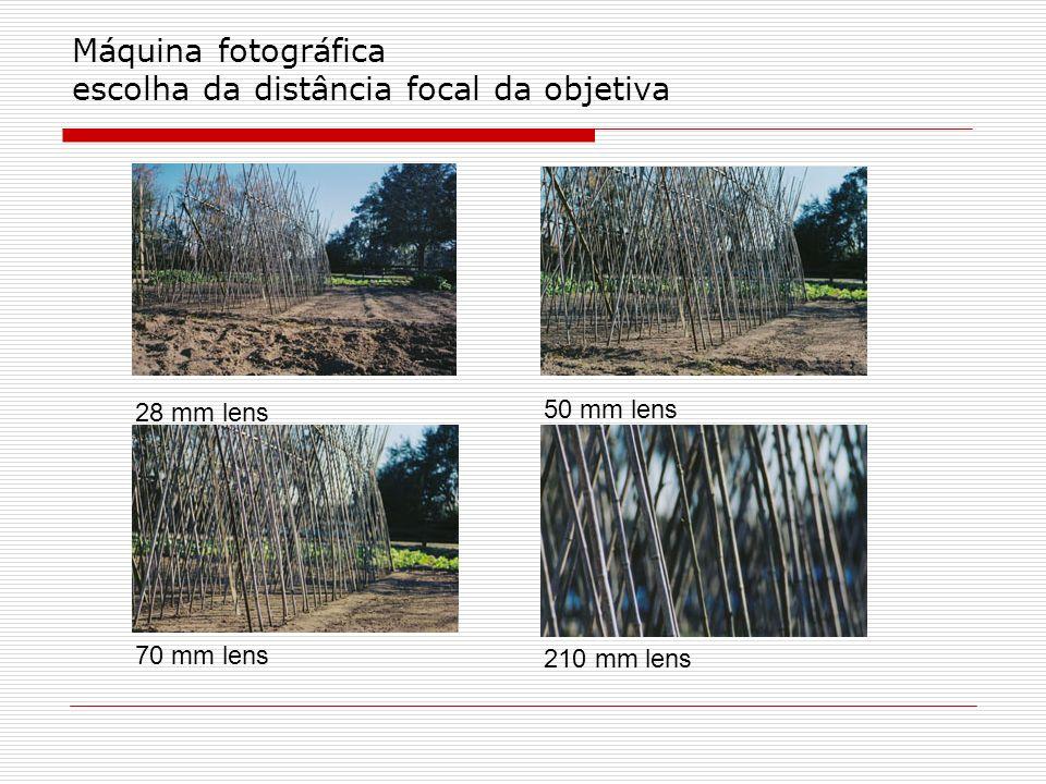 Máquina fotográfica escolha da distância focal da objetiva 28 mm lens 50 mm lens 70 mm lens 210 mm lens