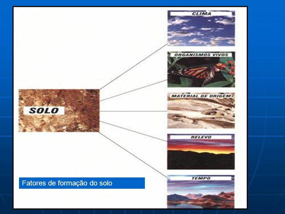 Fatores de formação do solo