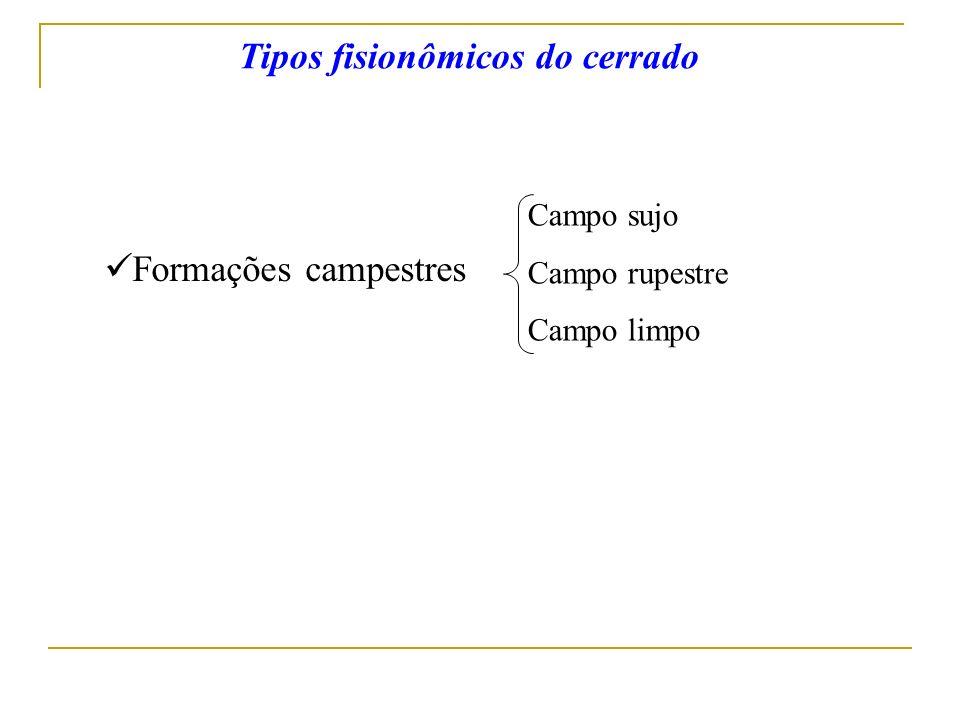 Formações campestres Campo sujo Campo rupestre Campo limpo Tipos fisionômicos do cerrado