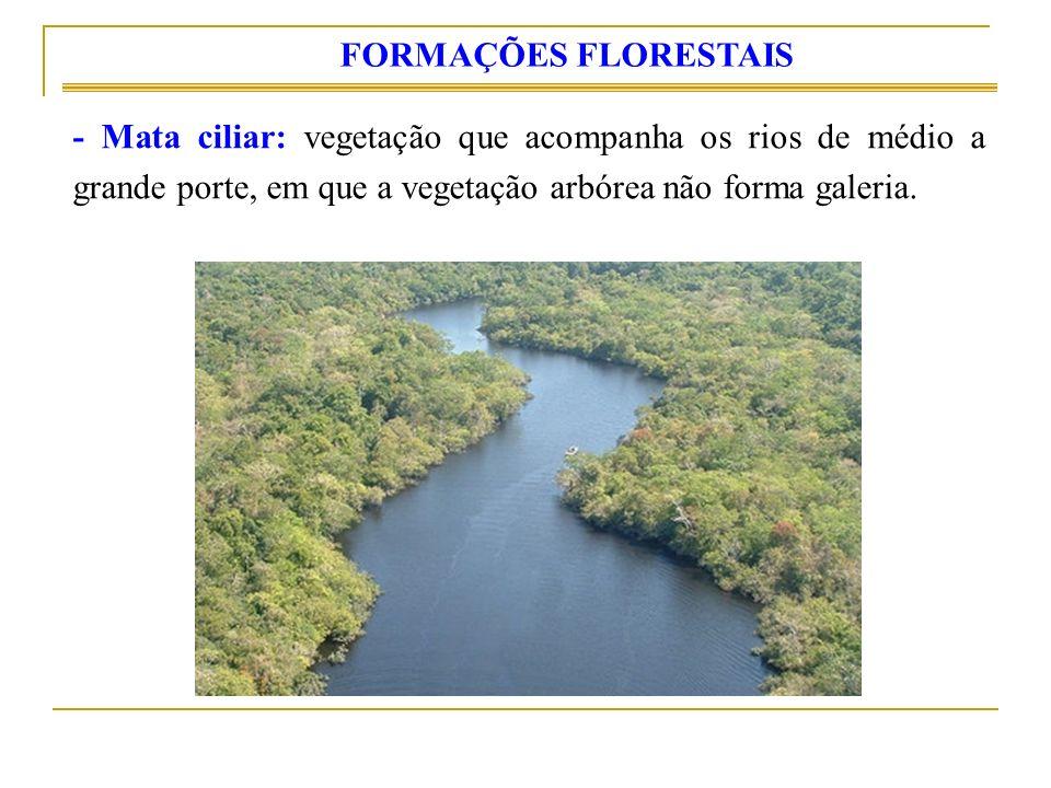 - Mata ciliar: vegetação que acompanha os rios de médio a grande porte, em que a vegetação arbórea não forma galeria. FORMAÇÕES FLORESTAIS
