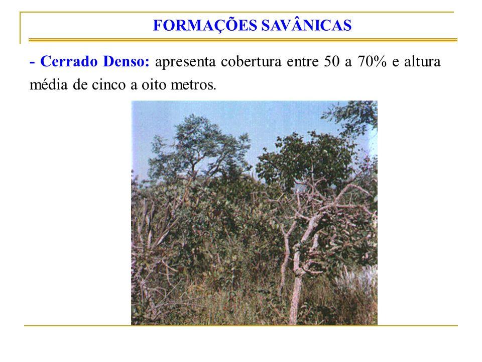 - Cerrado Denso: apresenta cobertura entre 50 a 70% e altura média de cinco a oito metros. FORMAÇÕES SAVÂNICAS