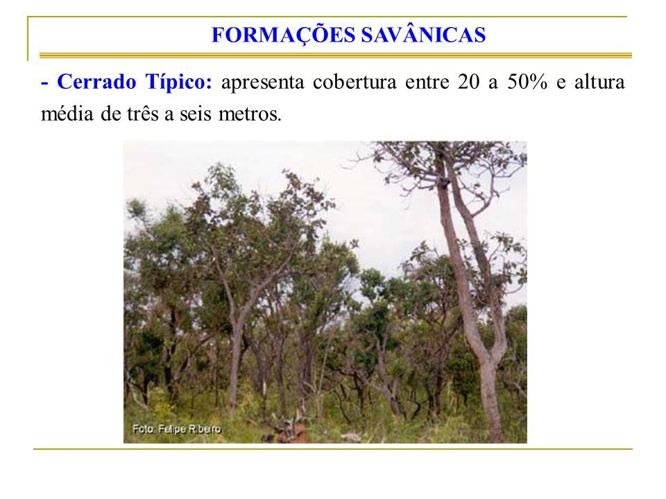 - Cerrado Típico: apresenta cobertura entre 20 a 50% e altura média de três a seis metros. FORMAÇÕES SAVÂNICAS
