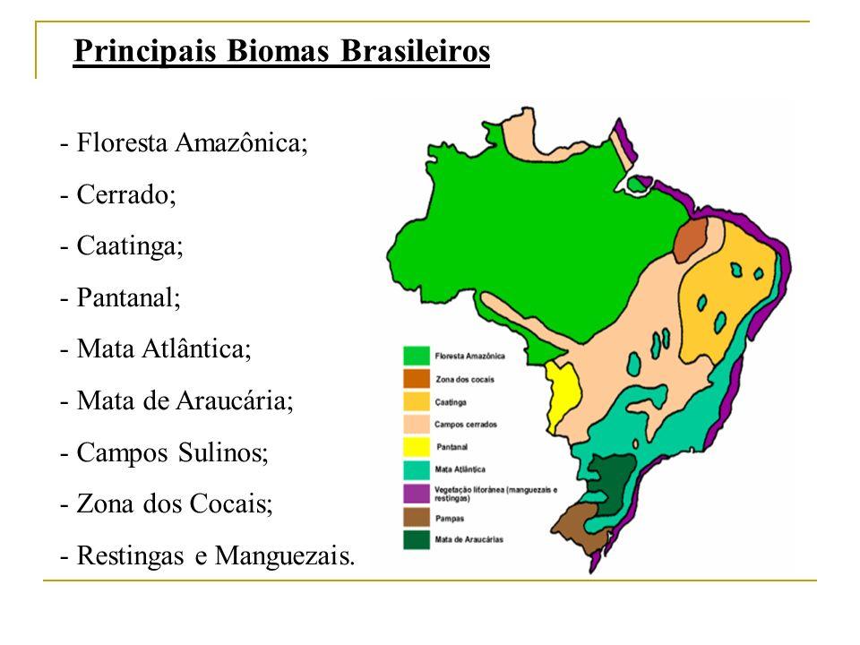 Principais Biomas Brasileiros - Floresta Amazônica; - Cerrado; - Caatinga; - Pantanal; - Mata Atlântica; - Mata de Araucária; - Campos Sulinos; - Zona dos Cocais; - Restingas e Manguezais.