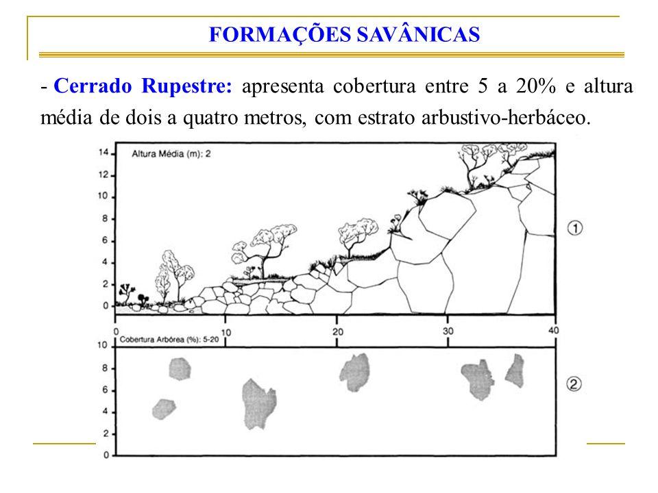 - Cerrado Rupestre: apresenta cobertura entre 5 a 20% e altura média de dois a quatro metros, com estrato arbustivo-herbáceo.