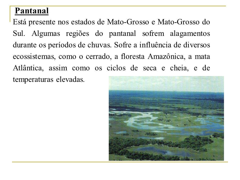 Pantanal Está presente nos estados de Mato-Grosso e Mato-Grosso do Sul. Algumas regiões do pantanal sofrem alagamentos durante os períodos de chuvas.