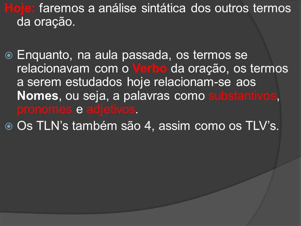 Os TLNs: Adjunto Adnominal Predicativo (do sujeito/do objeto) Complemento Nominal Aposto Com relação a essas funções sintáticas, trataremos apenas das dificuldades mais comuns: