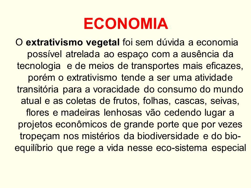 Atividades econômicas A Zona da Mata é a principal sub-região nordestina: é a mais urbanizada, a mais industrializada e a mais povoada.