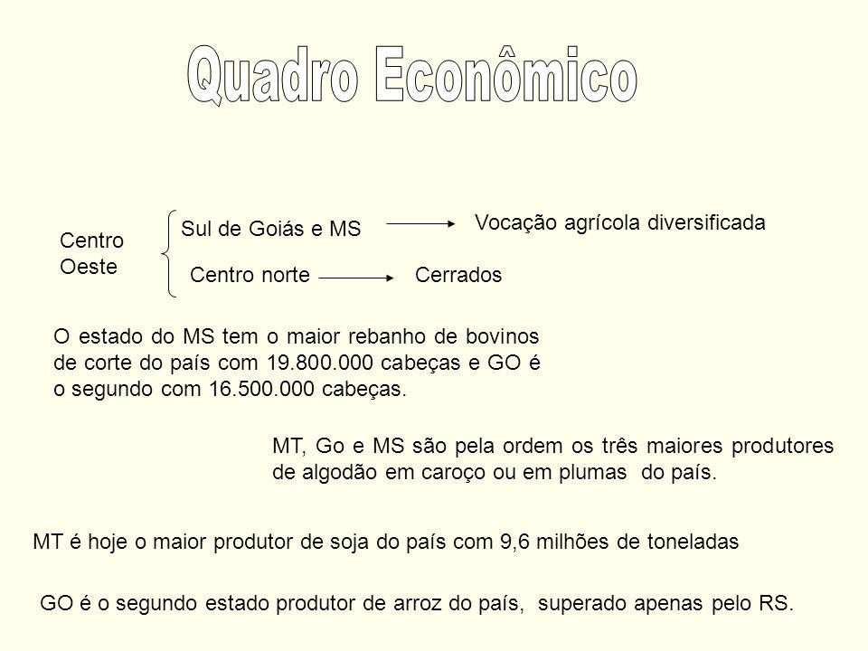 Sul de Goiás e MS Vocação agrícola diversificada Centro norteCerrados Centro Oeste O estado do MS tem o maior rebanho de bovinos de corte do país com