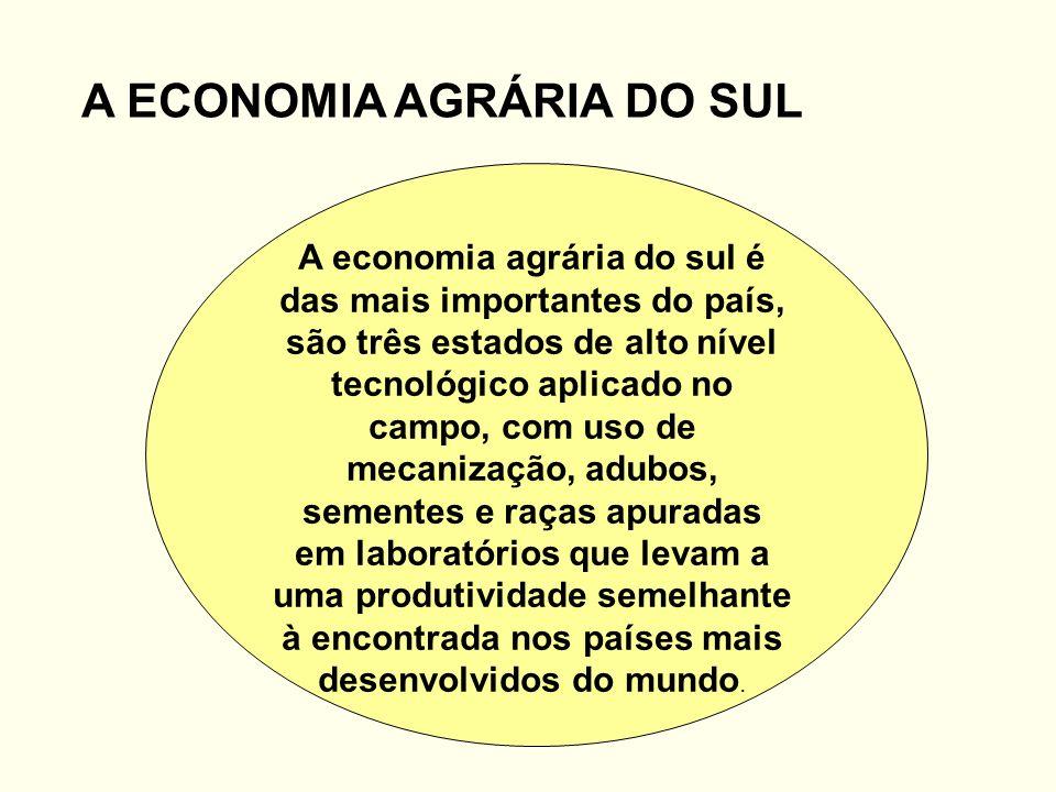 A ECONOMIA AGRÁRIA DO SUL A economia agrária do sul é das mais importantes do país, são três estados de alto nível tecnológico aplicado no campo, com