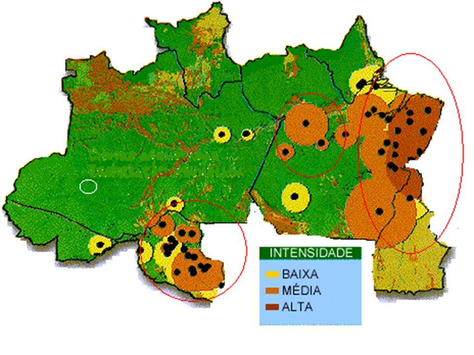 Sul de Goiás e MS Vocação agrícola diversificada Centro norteCerrados Centro Oeste O estado do MS tem o maior rebanho de bovinos de corte do país com 19.800.000 cabeças e GO é o segundo com 16.500.000 cabeças.