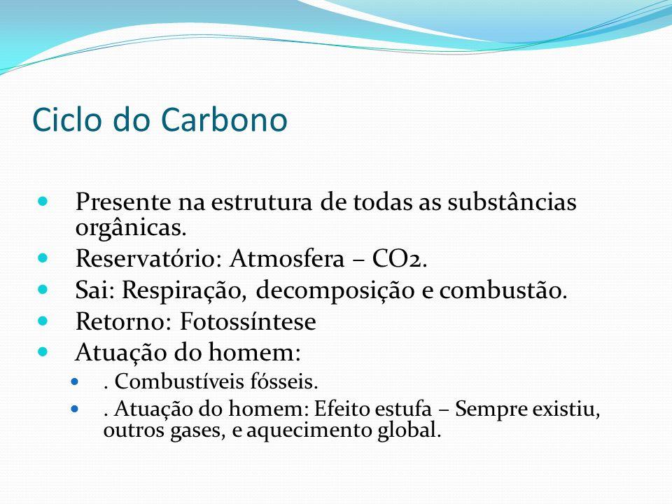 Ciclo do Carbono Presente na estrutura de todas as substâncias orgânicas. Reservatório: Atmosfera – CO2. Sai: Respiração, decomposição e combustão. Re