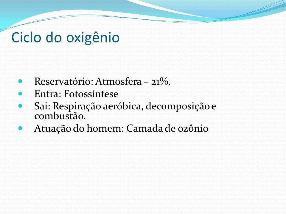 Ciclo do oxigênio Reservatório: Atmosfera – 21%. Entra: Fotossíntese Sai: Respiração aeróbica, decomposição e combustão. Atuação do homem: Camada de o