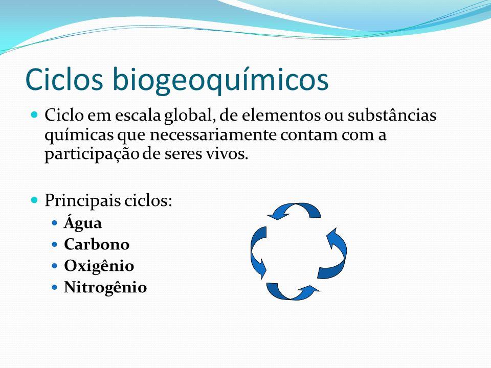 Ciclos biogeoquímicos Ciclo em escala global, de elementos ou substâncias químicas que necessariamente contam com a participação de seres vivos. Princ