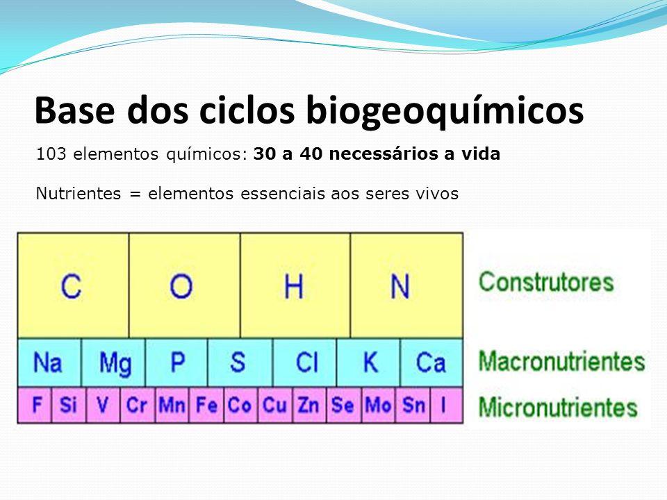 Base dos ciclos biogeoquímicos 103 elementos químicos: 30 a 40 necessários a vida Nutrientes = elementos essenciais aos seres vivos