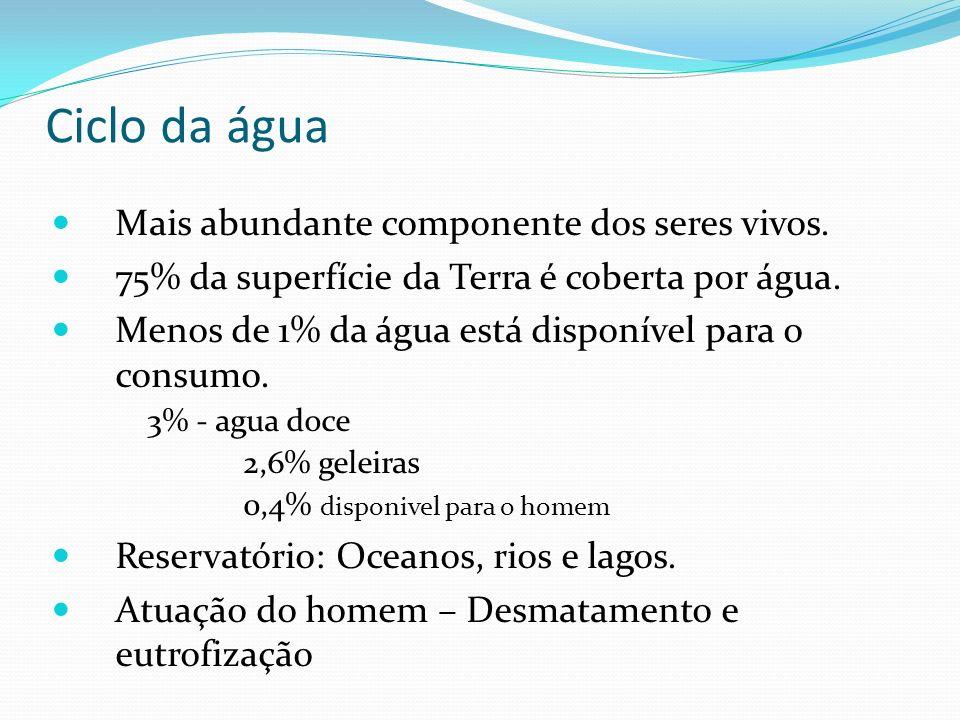 Ciclo da água Mais abundante componente dos seres vivos. 75% da superfície da Terra é coberta por água. Menos de 1% da água está disponível para o con