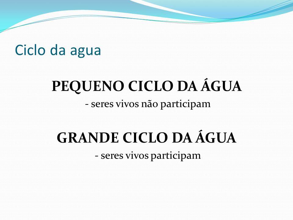 Ciclo da agua PEQUENO CICLO DA ÁGUA - seres vivos não participam GRANDE CICLO DA ÁGUA - seres vivos participam
