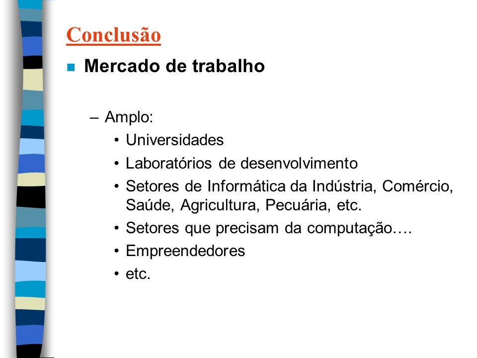 Conclusão n Mercado de trabalho –Amplo: Universidades Laboratórios de desenvolvimento Setores de Informática da Indústria, Comércio, Saúde, Agricultura, Pecuária, etc.