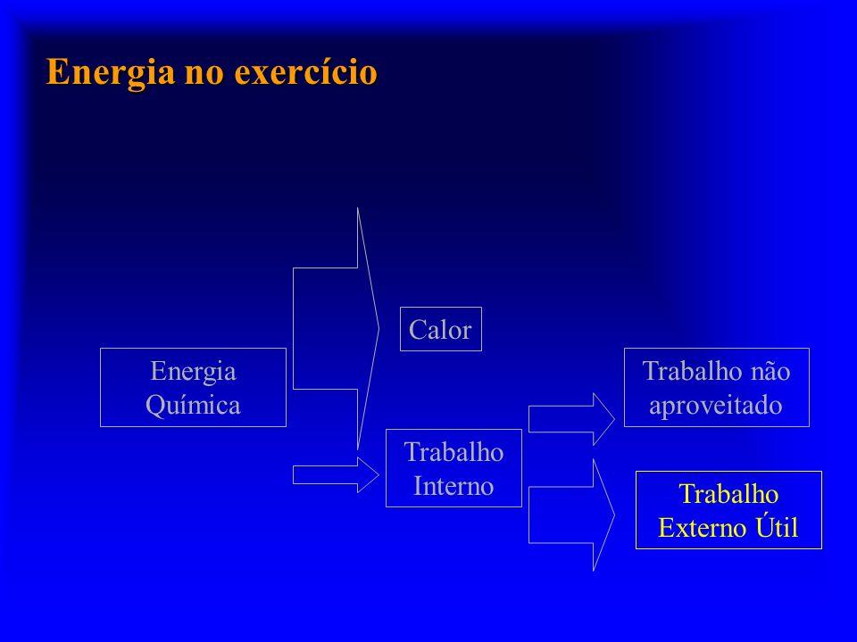 Energia no exercício Energia Química Trabalho Interno Trabalho Externo Útil Calor Trabalho não aproveitado