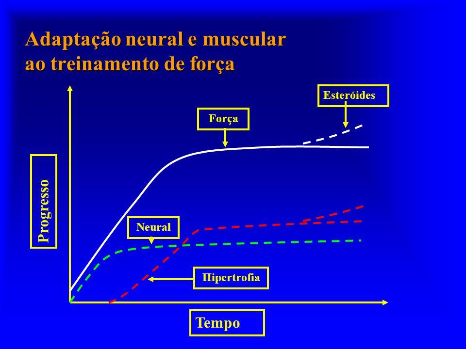 Progresso Tempo Força Esteróides Hipertrofia Neural Adaptação neural e muscular ao treinamento de força