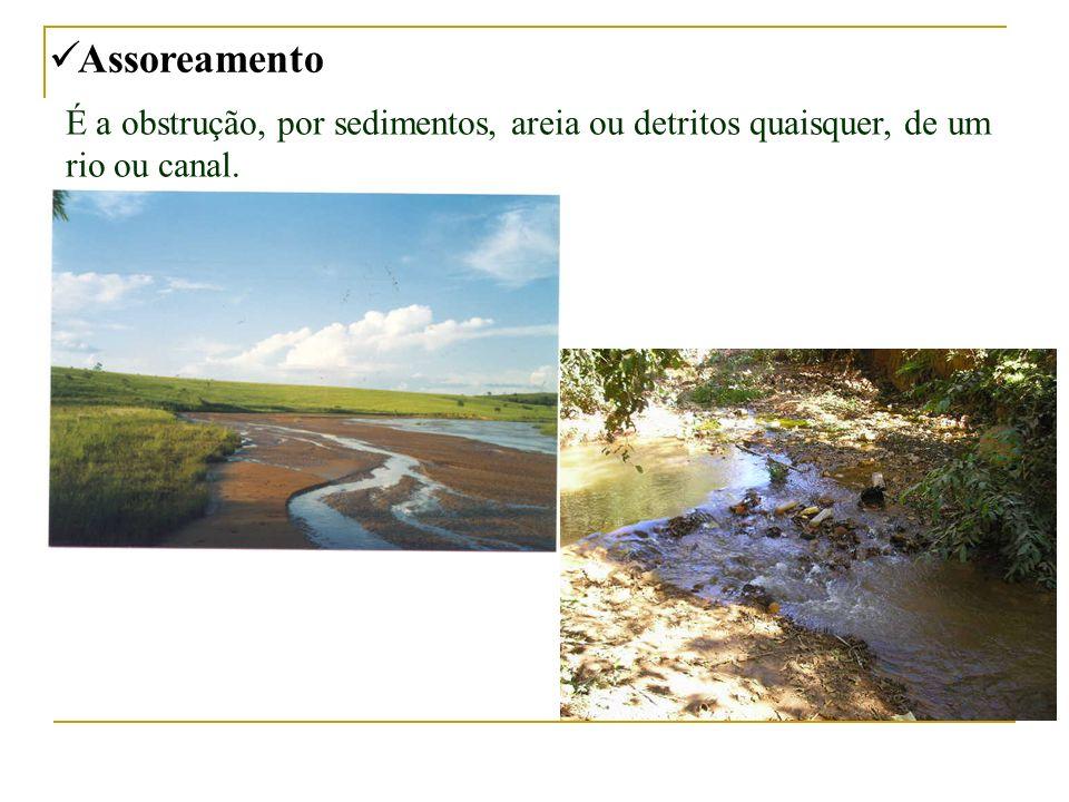 Assoreamento É a obstrução, por sedimentos, areia ou detritos quaisquer, de um rio ou canal.
