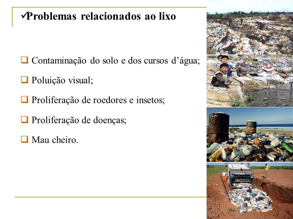 Problemas relacionados ao lixo Contaminação do solo e dos cursos dágua; Poluição visual; Proliferação de roedores e insetos; Proliferação de doenças;