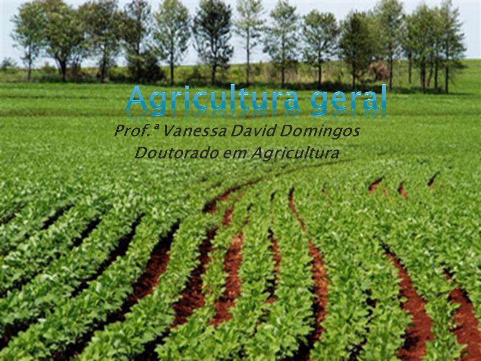 Prof.ª Vanessa David Domingos Doutorado em Agricultura