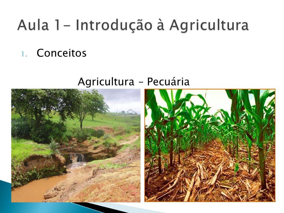 1. Conceitos Agricultura – Pecuária