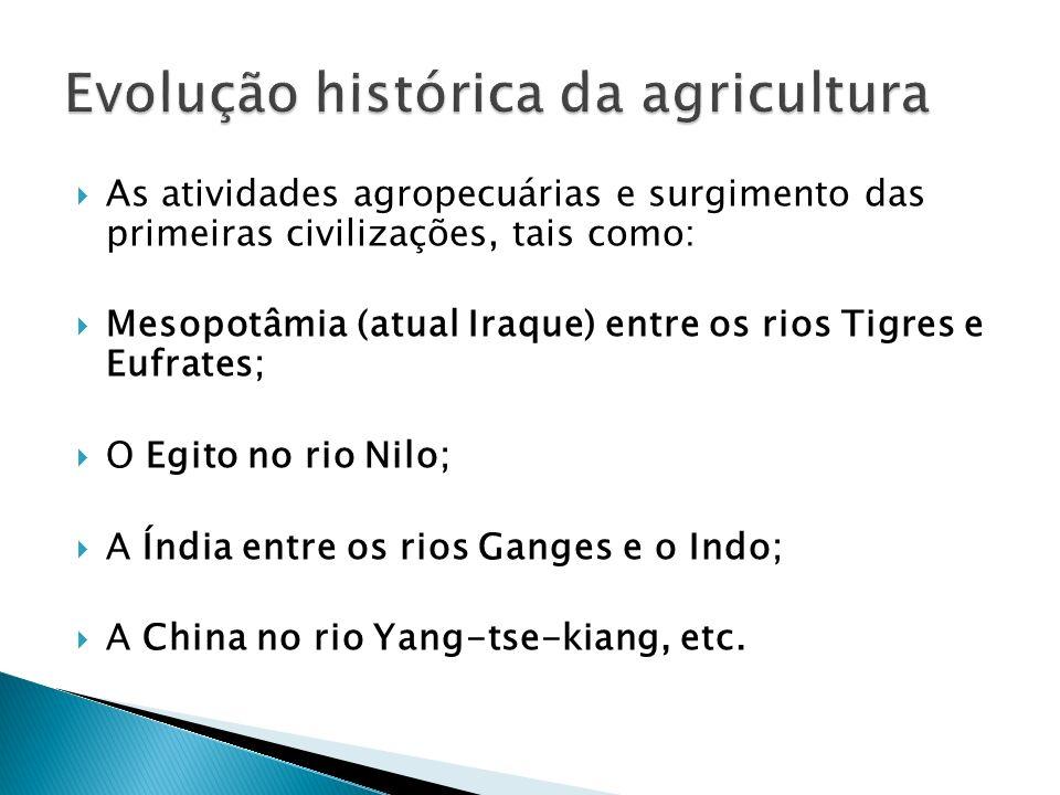 As atividades agropecuárias e surgimento das primeiras civilizações, tais como: Mesopotâmia (atual Iraque) entre os rios Tigres e Eufrates; O Egito no