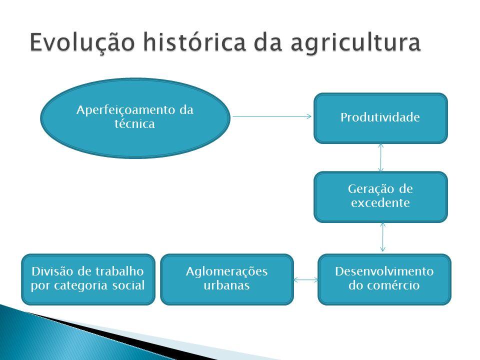 Aperfeiçoamento da técnica Produtividade Geração de excedente Desenvolvimento do comércio Aglomerações urbanas Divisão de trabalho por categoria socia