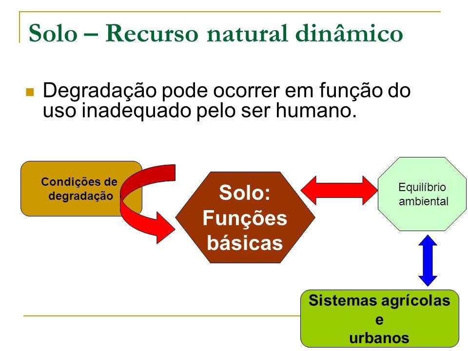 Poluição do solo: causas e consequências Atividades industriais, turismo, expansão urbana e industrial desordenados.