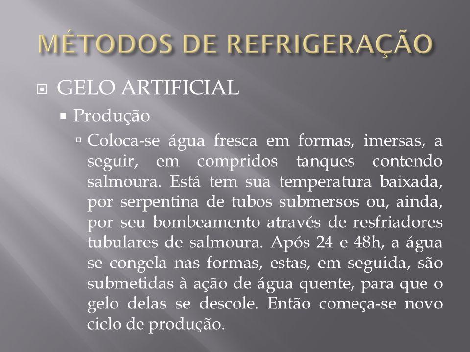 INDUSTRIAL BANCADA CONGELAMENTO POR IMERSÃO
