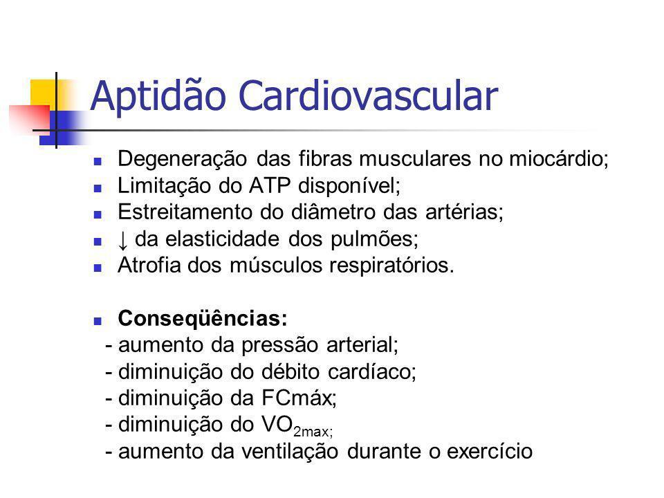 Aptidão Cardiovascular Degeneração das fibras musculares no miocárdio; Limitação do ATP disponível; Estreitamento do diâmetro das artérias; da elasticidade dos pulmões; Atrofia dos músculos respiratórios.